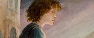 Peregrin Took (banner)