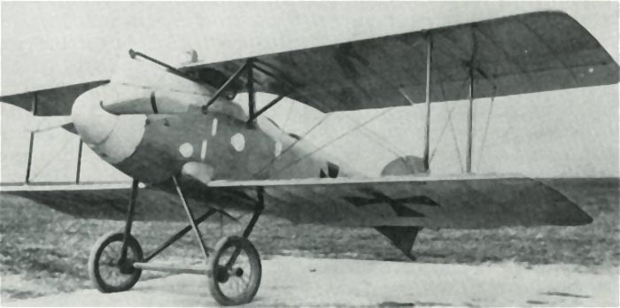 An example of Albatros D.II, ready to fly.
