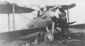 A damaged Ni.28 flown by 1st Lt. Meissner, who twice survived the loss of his top wing fabric.