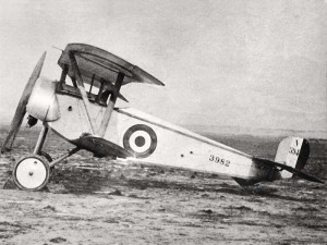 "An Entente Nieuport 11, the ""Bébé""."